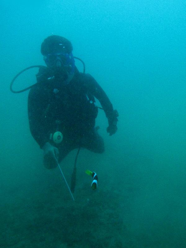 beriwala_diving_120316_0037_adj_wr