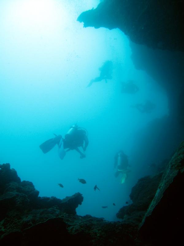 Digital Underwater Photos